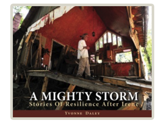 A Mighty Storm by Yvonne Daley